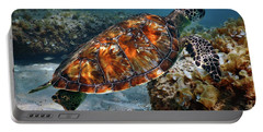 Turtle And Shark Swimming At Ocean Reef Park On Singer Island Florida Portable Battery Charger by Justin Kelefas