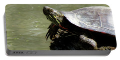 Turtle Bask Portable Battery Charger