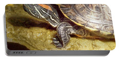 Turtle Reflections Portable Battery Charger