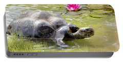 Turtle Takes A Swim Portable Battery Charger by Ricky Dean