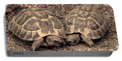 Turtles Pair Portable Battery Charger by Gina Dsgn