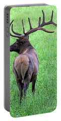 Twelve Point Stud Portable Battery Charger