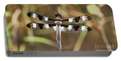 Twelve-spotted Skimmer Portable Battery Charger