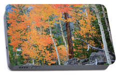 Portable Battery Charger featuring the photograph Twisted Pine by David Chandler