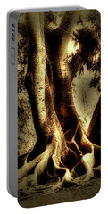 Portable Battery Charger featuring the photograph Twisted Trees by Tom Prendergast