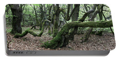 Portable Battery Charger featuring the photograph Twisted Trunks Of Beech Trees - Old Beech Forest by Michal Boubin