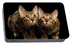 Two Bengal Kitty Looking In Camera On Black Portable Battery Charger by Sergey Taran