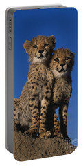 Two Cheetah Cubs Portable Battery Charger by Martin Harvey and Photo Researchers