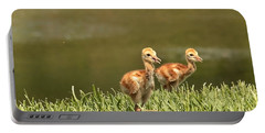 Two Chicks Portable Battery Charger
