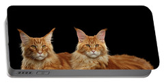 Two Ginger Maine Coon Cat On Black Portable Battery Charger