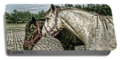 Two Horses In A Field Portable Battery Charger