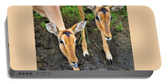 Two Impala Portable Battery Charger