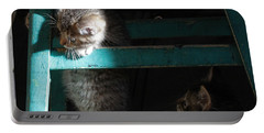 Portable Battery Charger featuring the photograph Two Kittens With Turquoise Chair by Doris Potter
