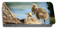 Two Little Goslings Portable Battery Charger