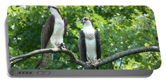 Two On A Limb - Osprey Portable Battery Charger by Donald C Morgan