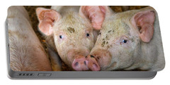 Two Pigs Portable Battery Charger