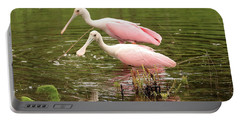 Two Spoonbills In Pond Portable Battery Charger by Carol Groenen