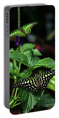 Two Tailed Jay Butterflies- Graphium Agamemnon Portable Battery Charger