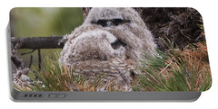 Two Whooo's  Portable Battery Charger