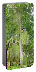Portable Battery Charger featuring the photograph Under A Tropical Tree by Francesca Mackenney