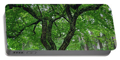 Portable Battery Charger featuring the photograph Under The Shade Tree by Tikvah's Hope