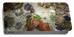 Portable Battery Charger featuring the photograph Under Water Life by Carol Lynn Coronios