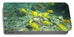 Underwater Yellow Tang Portable Battery Charger