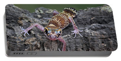 Portable Battery Charger featuring the photograph Up And Over - Gecko by Nikolyn McDonald
