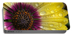 Daisy Up Close  Portable Battery Charger