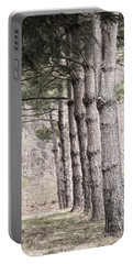 Urban Forestry Portable Battery Charger