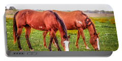 Portable Battery Charger featuring the photograph V90 Over For Dinner by Melinda Ledsome