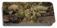 Valley Of Fire Prickly Pear Portable Battery Charger