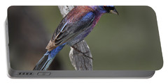 Varied Bunting Portable Battery Charger