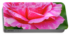 Variegated Pink And White Rose Petals Portable Battery Charger