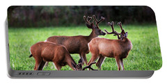 Velvet Antlers In The Sunset Portable Battery Charger