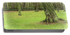 Venerable Trees And A Stone Wall Portable Battery Charger