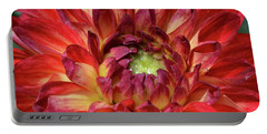 Variegated Dahlia Beauty Portable Battery Charger by Debby Pueschel
