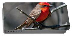 Portable Battery Charger featuring the photograph Vermilion Flycatcher by Dan McManus
