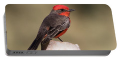 Vermilion Flycatcher In Northern California Portable Battery Charger