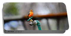 Vermilion Flycatcher Two Portable Battery Charger