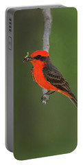 Vermillion Flycatcher With Bee Portable Battery Charger