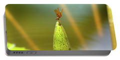 Very Small Dragonfly In Vertical Position Portable Battery Charger