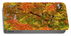 Portable Battery Charger featuring the photograph Vibrant Sugar Maple by Gary Hall