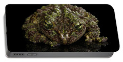Vietnamese Mossy Frog, Theloderma Corticale Or Tonkin Bug-eyed Frog, Isolated On Black Background Portable Battery Charger by Sergey Taran