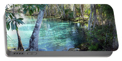 View 2 Of Spring 3 At Three Sisters Springs Portable Battery Charger