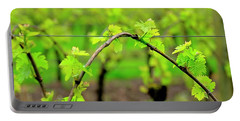 Vine Wire 23732 14x8 Portable Battery Charger