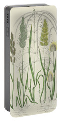 Vintage Botanical Print Of Grass Varieties Portable Battery Charger