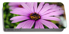 The African Daisy 1 Portable Battery Charger
