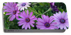 The African Daisy Flowers Portable Battery Charger