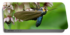 Virginia Ctenucha Moth Portable Battery Charger